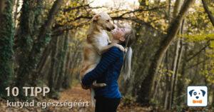 10 tipp kutyád egészségéért