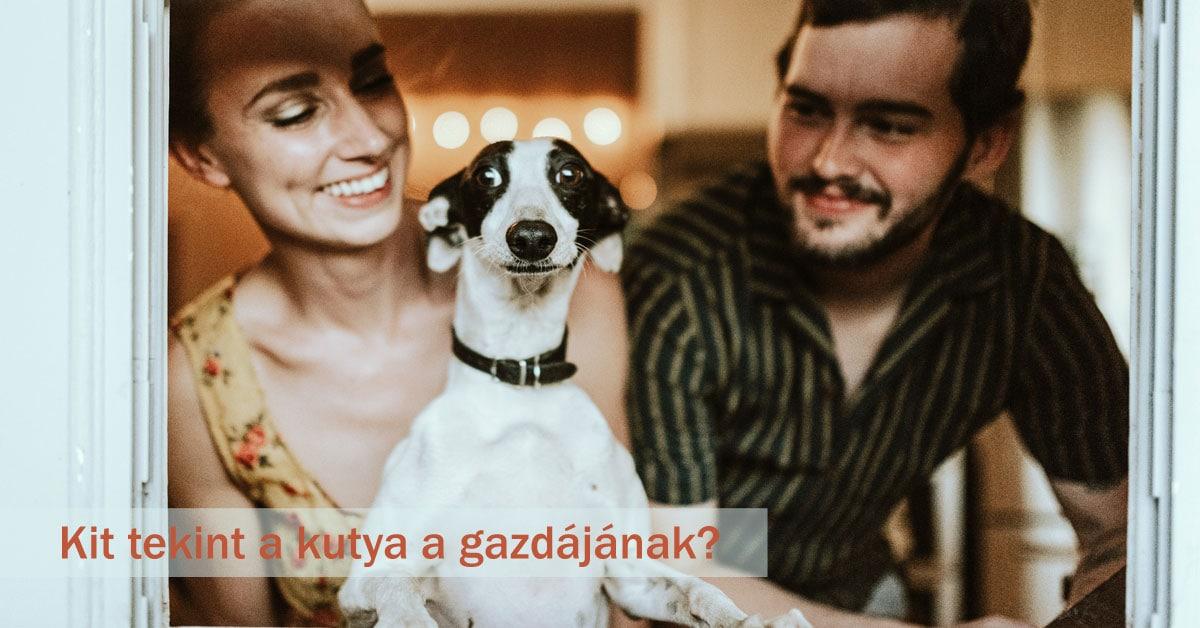 Read more about the article Kit tekint a kutya a gazdájának?